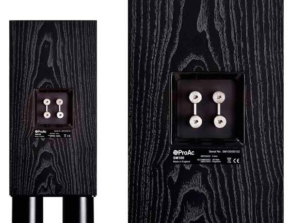 Акустическая система ProAc Studio SM 100 Black Ash: фото 3