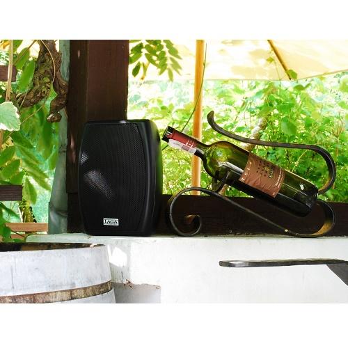 Акустическая система Taga Harmony TOS-315 Black: фото 5