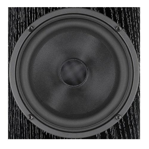 Акустическая система AUDIO PHYSIC CLASSIC 8 Walnut: фото 3